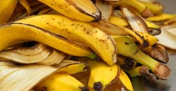 Banana Peels and Skin Cancer